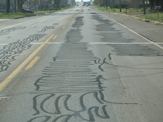 tar-snakes-all-over-road