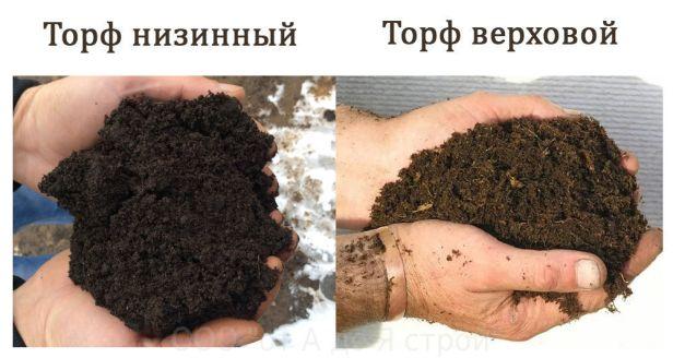 torf_verkhovoy_i_nizinnyy_raznitsa