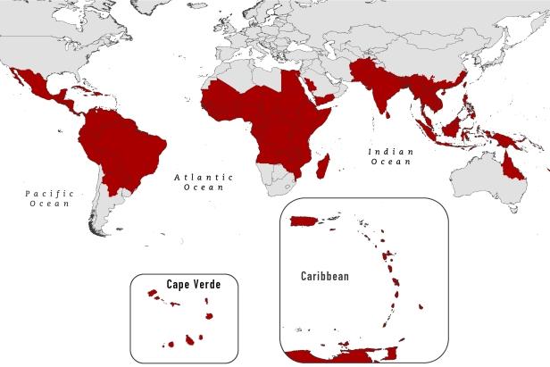 dengue_brochure_map